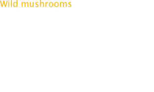 Wild mushrooms are hot in America. Go to any fine restaurant in any city and you'll encounter at least one dish prepared with wild mushrooms. The thing is, most of those wild mushrooms really aren't so wild. Many were grown in damp warehouses just like the regular mushrooms we've all been eating for years.