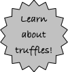 Learn about truffles!